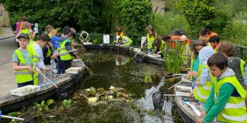 pond-dipping